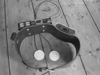 Tigger Roland TD3